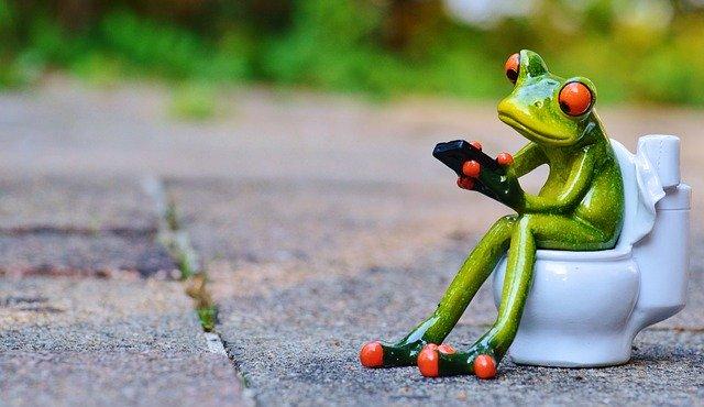 Frog Mobile Phone Toilet Loo Wc