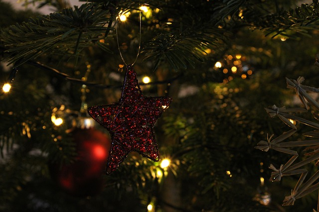 Christmas Star Christmas Tree - fluffy_marry / Pixabay