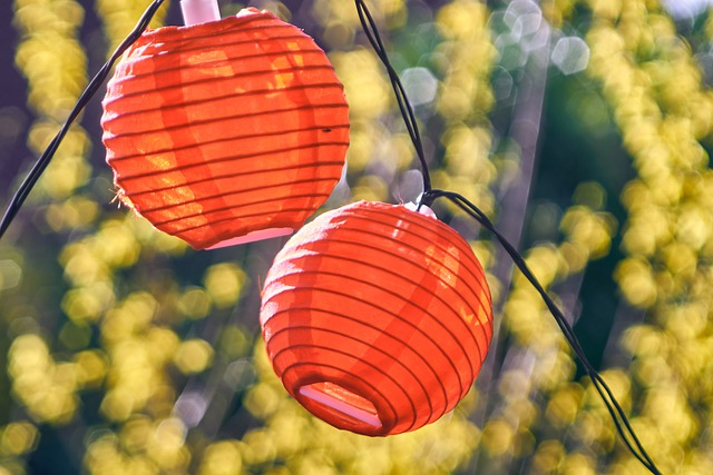 Lampion Lamp Screen Lighting - distelAPPArath / Pixabay