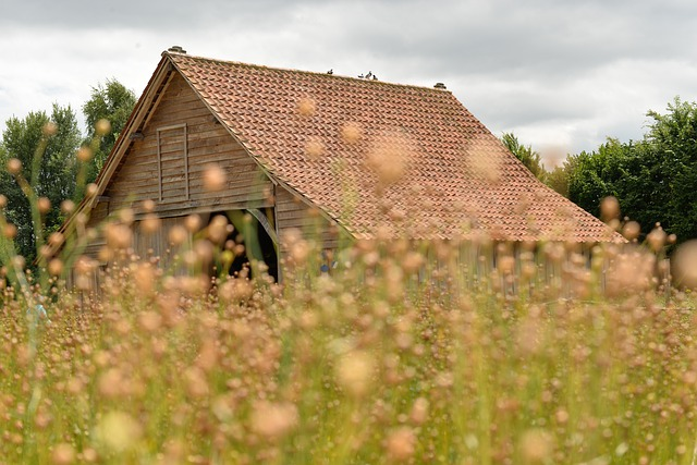 Roofing House Fields Fleuri - cyremille / Pixabay